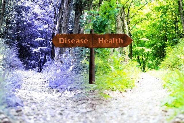 生活習慣病の予防法